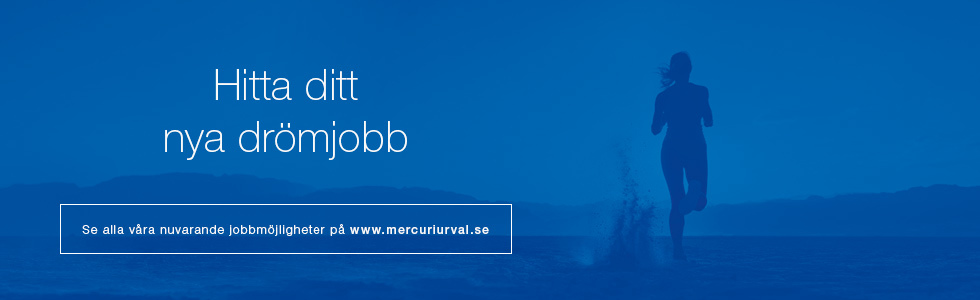 Affärsområdeschef Norrtåg