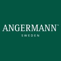 Head of Transactions till Angermann