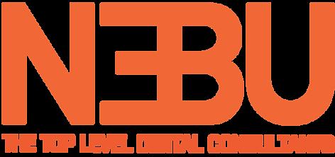 Projektledare inom IT till Nebu