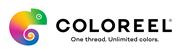 Mjukvaruutvecklare mot inbyggda system till Coloreel
