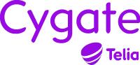 IT-arkitekt på Cygate